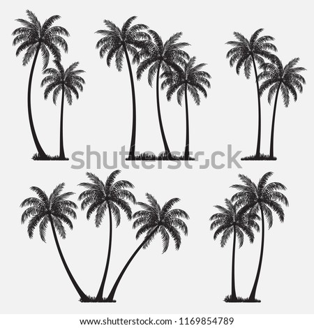 Set of palm trees, coconut trees, black silhouette isolated on white background. Vector illustration