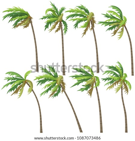 Set of palm trees on wind storm isolated on white background. Tropical landscape element design. Vector flat illustration.