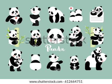 Set of Panda figures, isolated vector illustration