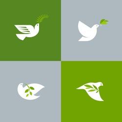 free dove stock photos