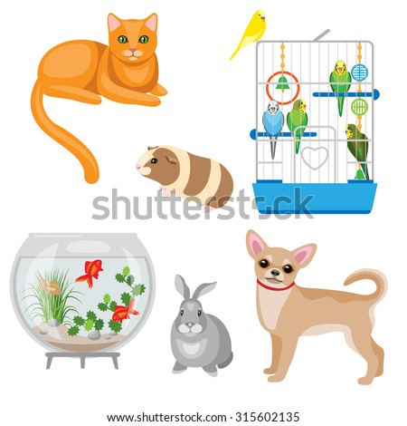 set of pets and other animal