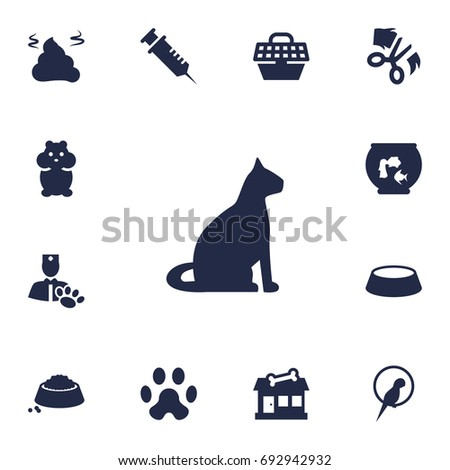 set of 13 pets icons set