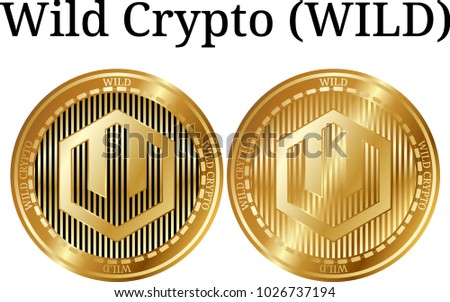 Set of physical golden coin Wild Crypto (WILD), digital cryptocurrency. Wild Crypto (WILD) icon set. Vector illustration isolated on white background.