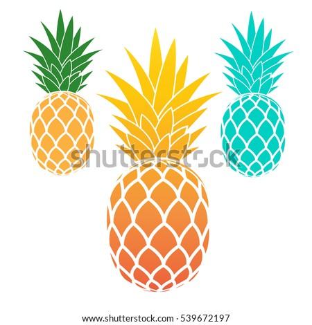 Set of pineapples. exotic fruit. Vector illustration