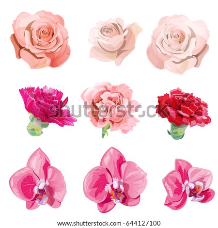 set of pink  red flowers and
