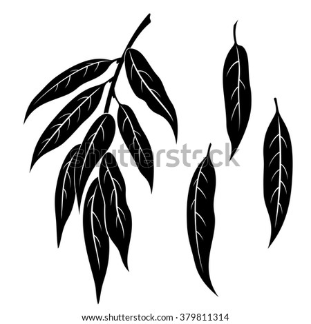set of plant pictograms  willow