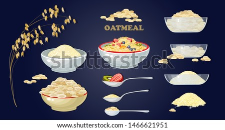 Set of Porridge in the bowl and  fruits and berries. Oat Porridge breakfast. A bowl of cereal and spoon on blue background. Branches of oats and grain. Oatmeal. Vector illustration of healthy food.