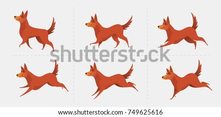 Set of poses for the animation of the dog. The dog is running. Red dog symbol of the year 2018. Vector illustration.