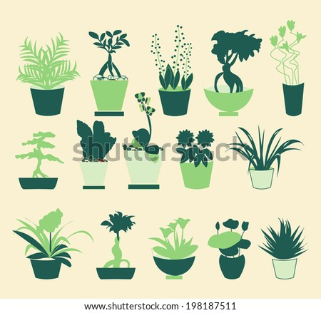 Set Of Pot Plants Garden Flowers And Herbs