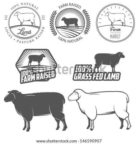set of premium lamb labels ...