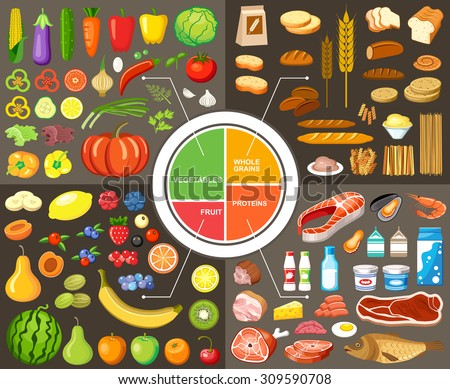 Set of products for healthy food. Plate model. Nutrients. Vector illustration