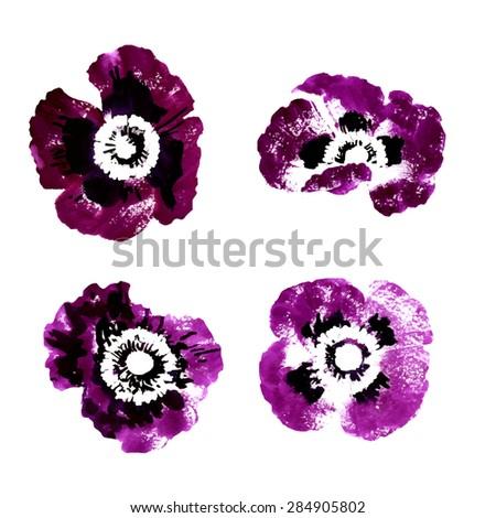 set of purple watercolor poppy
