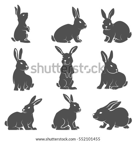 Set of rabbit icons isolated on white background. Vector illustration