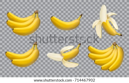 Set of realistic illustration bananas, 3d vector icons. Banana,half peeled banana,bunch of bananas isolated on white background, banana icon