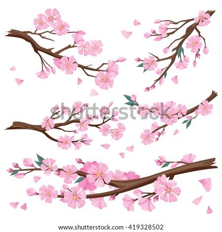 set of realistic sakura japan