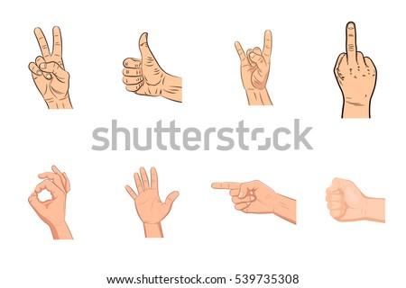 set of realistic vector hands