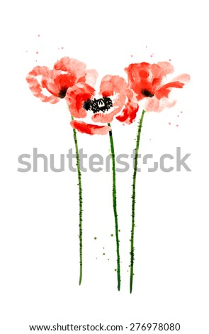 set of red watercolor poppy