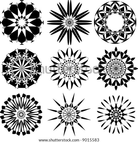 set of rosette flowers,vector