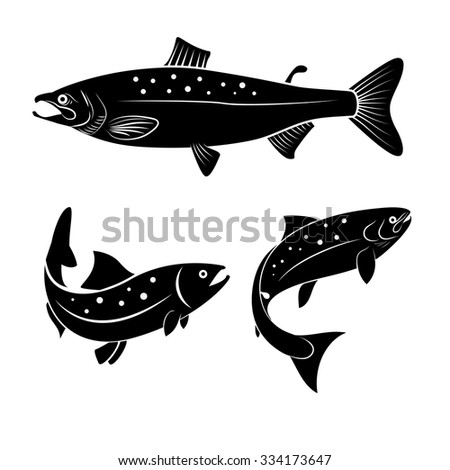 set of salmon fish isolated on