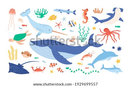 Set of sea and ocean underwater animals. Cute aquatic turtle, whale, narwhal, dolphin, octopus and colorful fishes. Childish colored flat cartoon vector illustration isolated on white background