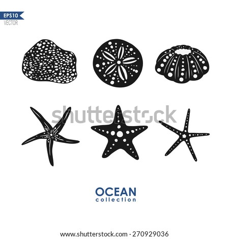 set of sea creatures, isolated on white