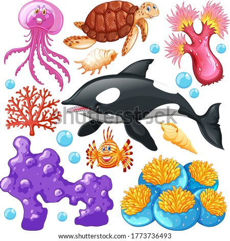 Set of sea creatures on white background illustration