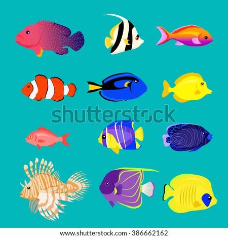 set of sea fish color design