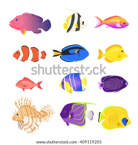 set of sea fish color design
