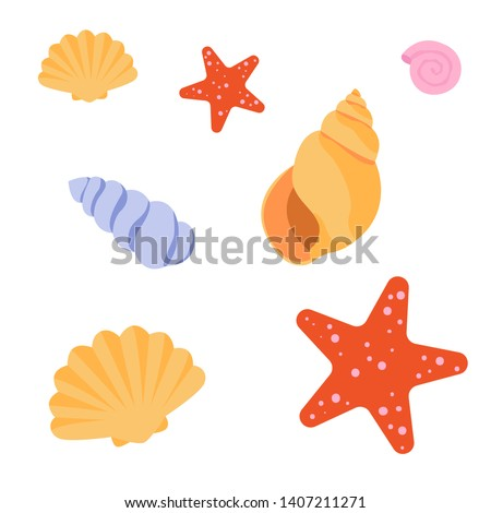 Set of sea shells and starfish on white background. Flat vector illustration.