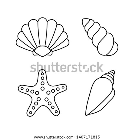 set of sea shells. tropical shells underwater. line icons isolated on white background. vector Illustration.