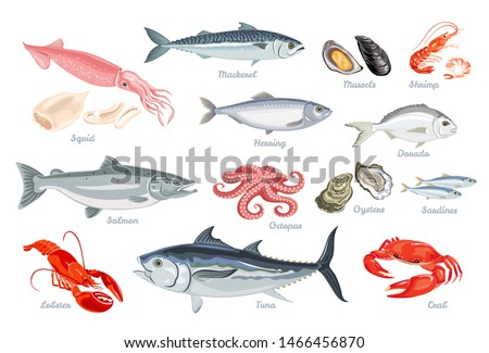 Set of seafood. Fish, mollusks and crustaceans. Vector illustration of sardines, mackerel, salmon, tuna, herring and dorado in cartoon flat style. Octopus, shrimp, oyster, mussel, squid, lobster. Photo stock ©