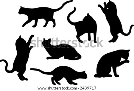 set of seven cat vector