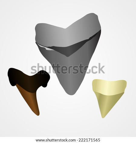 set of sharks' teeth