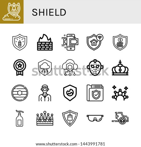 Set of shield icons such as Data protection, Protection, Firewall, Money transfer, Security, Badge, Shield, Safe, Hockey mask, Crown, Dentist, Lotion, Protective, Chariot , shield
