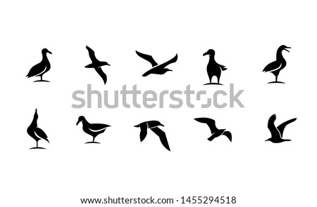 set of silhouette seagull bird ocean