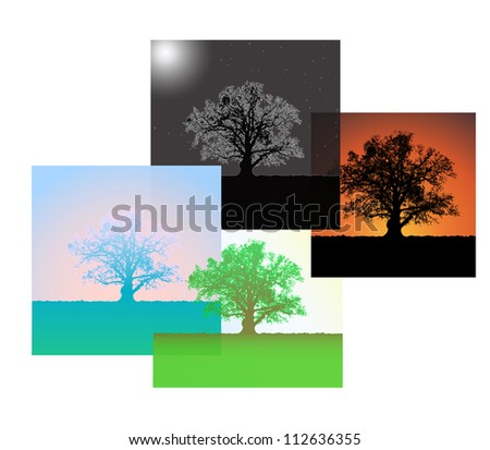 Set of silhouettes of a single oaks at different times days. Vector. eps 10