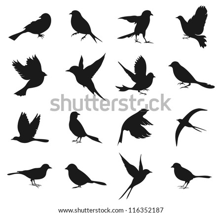 Set of silhouettes of birds. A vector illustration - stock vector