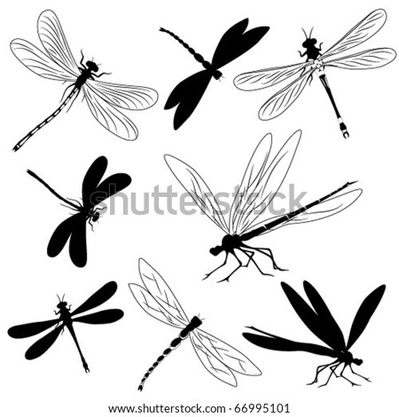 Set of silhouettes of dragonflies, tattoo - stock vector