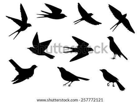 set of silhouettes of flying