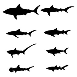 set of silhouettes of sharks on a white background