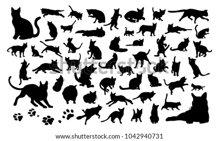 stock-vector-set-of-silhouettes-of-the-cats-and-the-paw-prints-vector-illustrations-isolated-on-white