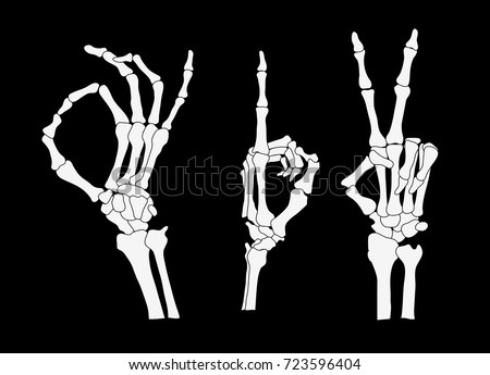 skeleton hand vector download free vector art stock graphics images rh vecteezy com skeleton hand vector free download skeleton hand vector free download