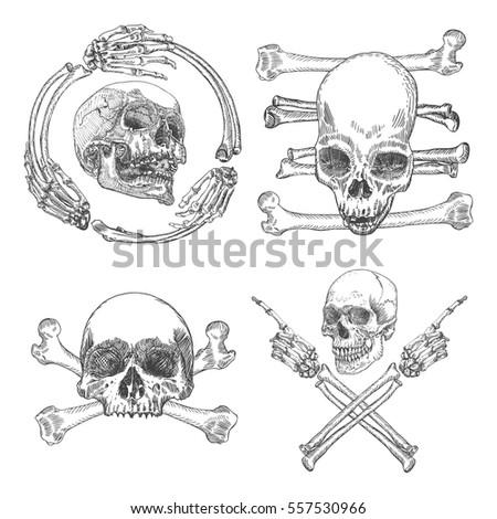 set of skulls crossbones  made