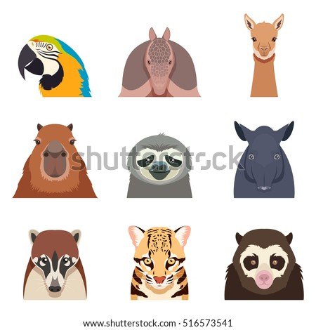 set of south america animals