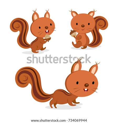 set of squirrel in different
