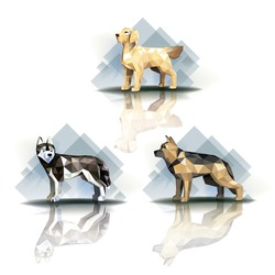 Set of stylized polygonal dogs of different breeds