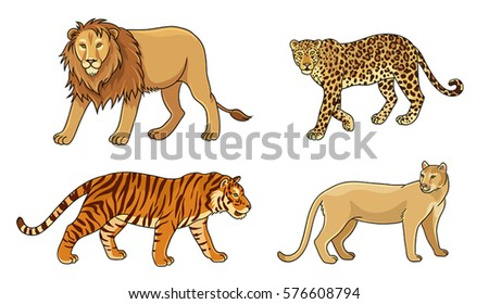 set of stylized vector big cats