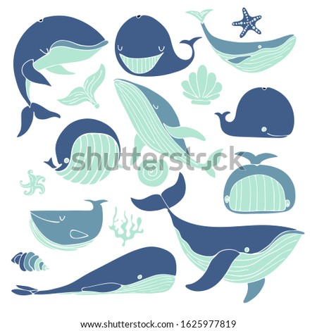 set of stylized whales. blue whale, sperm whale, oblique whale starfish, seaweed. Vector stock illustration hand-drawn, on a white isolated background without contour. Cartoon whales in various poses