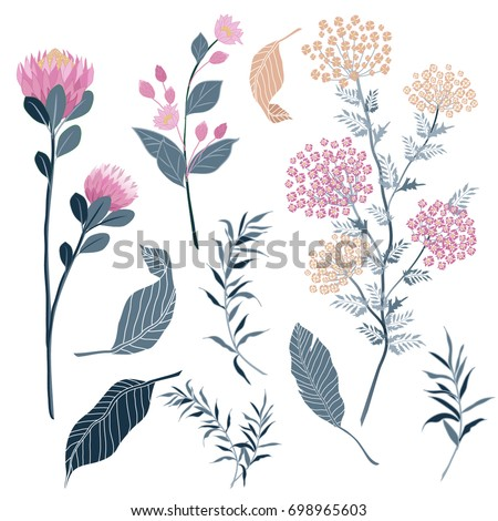 set of Summer Flora with Blooming garden flowers, Botanical natural flowers Illustration on white in hand drawing style.