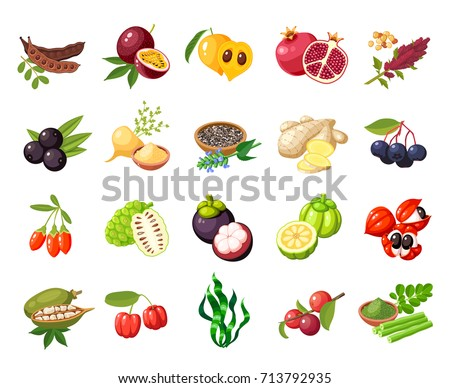 Set of superfood fruit. Vector illustration cartoon flat icon collection isolated on white.